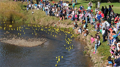 Proclamation Day Duck Race
